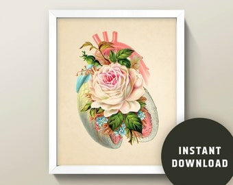 Heart & Rose Collage • 8x10 Wall Art · Instant Digital Download! • Human Anatomy / Flower