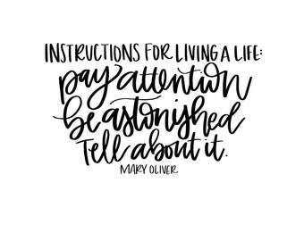 MARY OLIVER INSTRUCTIONS