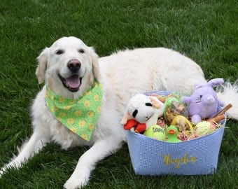 Personalized Easter Baskets || Gingham Pet Toy Basket for your Dog or Cat || Pink Blue Green Gingham Puppy Gift  by Three Spoiled Dogs