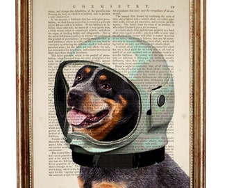 Dog With Space Helmet DICTIONARY PRINT on Vintage Dictionary Page 8'' x 10'' from up-cycled book