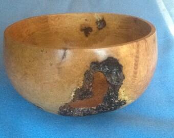 Silver Birch Burr Bowl