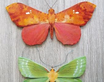 Moth ornaments