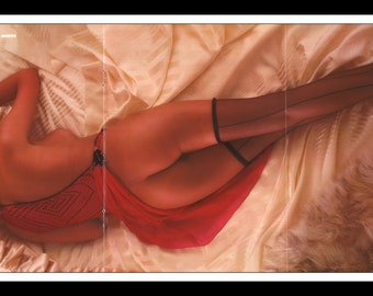 """Mature Playboy March 1985 : Playmate Centerfold Donna Smith 3 Page Spread Photo Wall Art Decor 11"""" x 23"""""""