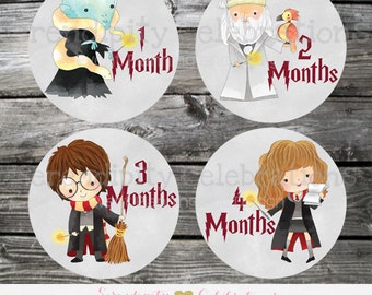 Harry Potter Baby Monthly Stickers, Set of Baby Milestone Stickers, Baby Month Sticker, Baby Bodysuit Sticker, Baby Shower Gift. Photo Prop