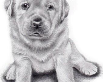 CUSTOM PET PORTRAIT from your favorite photo, Original Art, Dog Portrait, Custom Pet drawing, Labrador, Mother's day gift idea, Fine Art