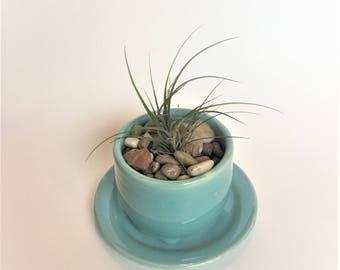 Teal Planter