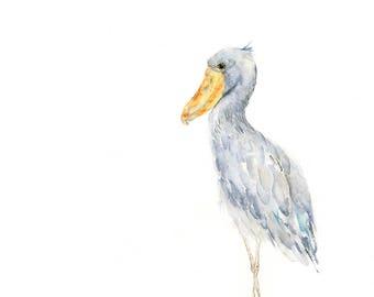 Shoebill Stork Watercolor Art Print: Modern bird art giclee print perfect for woodland themed room decor / modern stork watercolor painting