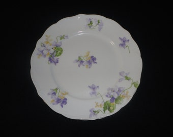 Antique Limoges France Dessert Plates Set of 2