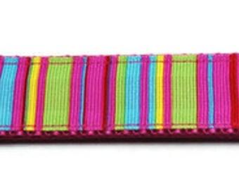 Large Multi-color Stripes Dog Collar