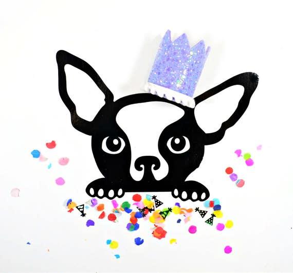 Dog Birthday || Pet Birthday Hat || Pet Birthday Crown || Cat Birthday Crown Hat || Animal Birthday Hat || Dog Photo Prop