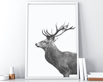 Printable Deer Head | Scandinavian Print | Nordic Wall Decor | Tumblr Room Decor | Deer Antler Decor | Minimalist Poster | Printable Art
