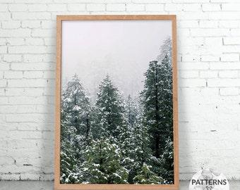 Snow Pine Trees - Scandinavian forest print- Printable Wall art - Digital print - Modern minimalist design - Photography