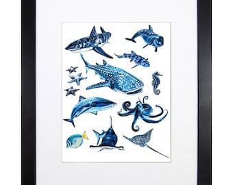 "Sea Creatures, Fine Art Print, 11""x14"""