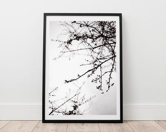 Tree Print - Nature Printable, Abstract Art, Digital Download, Minimalist Print, Scandinavian Wall Art, Black and White Photo, Branch Art,