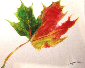 Nature, Fall Leaf drawing/painting - Watercolour