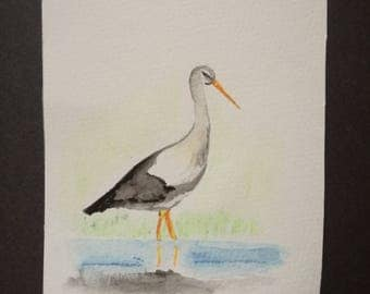 Bird - Stork - watercolor - image