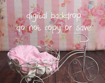 Digital background for newborn photography Spring backdrop (set of two)