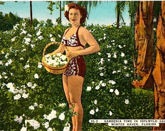 Vintage Florida Postcard - A Bathing Beauty and Gardenias at Idylwyld Gardens (Unused)