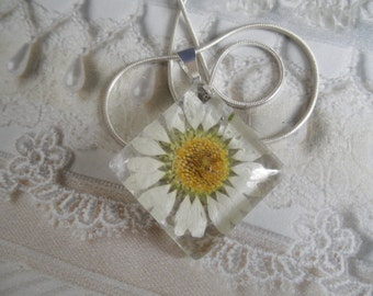 White Daisy Domed Square Glass Pressed Flower Pendant-Gifts Under 25-Symbolizes Loyal Love, Innocence-Nature's Wearable Art