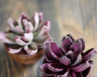 Paper Echeveria - Faux Succulent in Wood Bowl