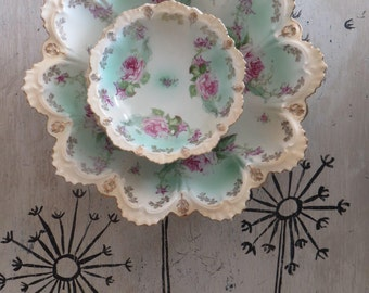 Cottage Chic Porcelain Fruit Bowl Set Pink Roses and Mint Green M Z Austria Antique Porcelain Bowl Floral Bowl