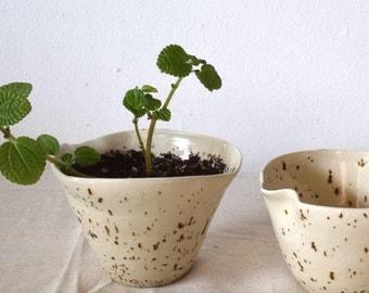 Planter/Handmade Planter/Ceramic Planter/Small Planter/Speckled/Cream Planter/Organic Planter/Organic/Handcrafted/Handmade/Unique