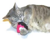 Cat Toy - Catnip Chocolate Raspberry Pie