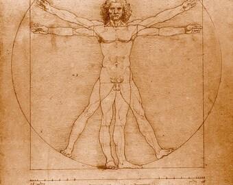 Leonardo da Vinci art, Da Vinci drawings, paintings, Human Anatomy, Vitruvian Man FINE ART PRINT, antique art prints, posters, reproductions