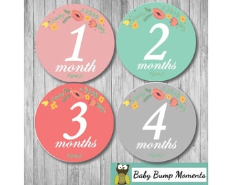 Month Stickers, Floral Baby Month Age Stickers, Flowers, Baby Shower Gift, Gift for Baby Girl, Monthly Age Stickers
