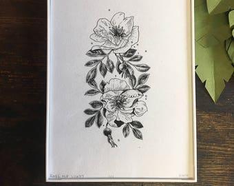 Rosehip Original Botanical Illustration