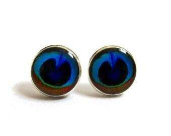 PEACOCK EARRING STUDS - Blue earrings - Peacock wedding - bridesmaids earrings - Peacock earrings - Peacock feather