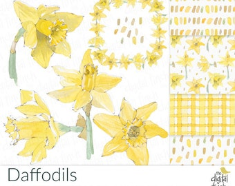 Daffodil Clip Art - Watercolor Floral Clipart with coordinating papers - instant download - royalty free -commercial use