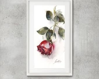 Rose Original Watercolor Painting, Red Rose, Watercolour Art