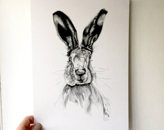 Hare Print - Hare Illustration - Hare Artwork - Animal Illustrator - Pen and Ink Print - black and white nursery print - A4 Print