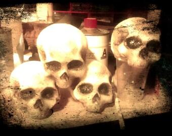 Skull Plush (cm 10x8x8)