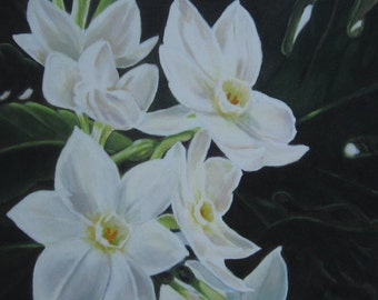 Paper Whites - Narcissus Flowers limited edition giclee print on canvas
