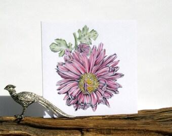 "Chrysanthemum 'Vagabond Prince' hand coloured blank white greeting card 6""/15cm original artwork watercolour botanical art pink flower"