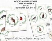 TABLE SIGN, woodland Table sign, woodland table number 16-26, forest table numbers, fox table sign, woodland wedding theme, forest wedding