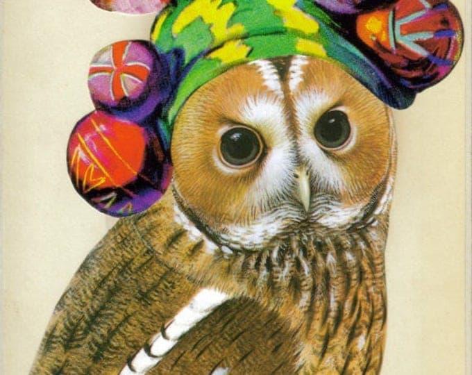 Hipster Owl Art, Bohemian Wildlife Artwork