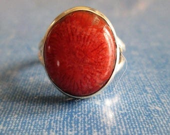 RING - Fossilised - Red HORN CORAL  - 925 - Sterling Silver - size 7   - red 143