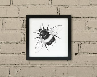 Framed Bee print. Bumble bee wall art. Endangered wildlife black ink art. Ink bumble bee drawing. Insect art frame.