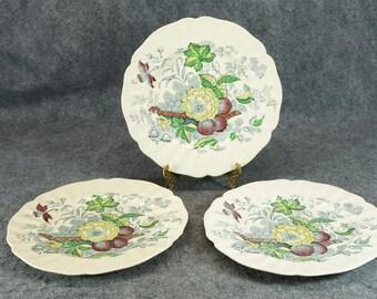 "Royal Doulton The Kirkwood Pattern 10 1/2"" Dinner Plate X 3 C. 1930S - 1950S"