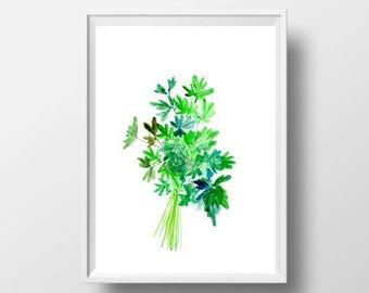 Parsley herb watercolor painting green leaf herb plant kitchen food wall art botanical print poster decor plant print deco 4x6 5x7 set 8x10