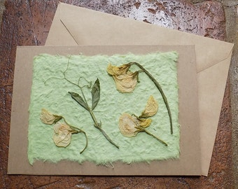 Greeting Card. Pressed Flower Card. Blank inside for your own message. Hand-made card using home-grown flowers.