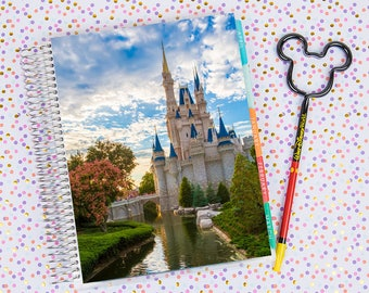 Disney World Erin Condren Life Planner Cover INSTANT DOWNLOAD - Cinderella Castle 13