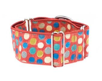 Martingale dog collar, martingale collars, martingale collar, dog martingale collar, 2 inch, dog collar, dog collars