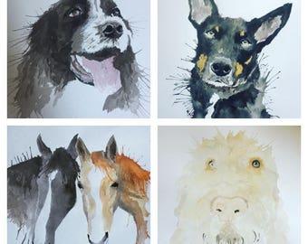 Pet Portraits on Request