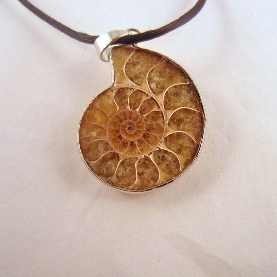 Ammonite Necklace: Natural Crystal Pendant, Stone Jewelry