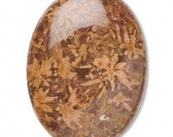 Chrysanthemum Stone, Brown Cabochon,40x30mm Oval, 1 Cab Each, D1000