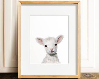 Lamb nursery art, Lamb print, PRINTABLE art, Farm animals, Nursery decor, Animal art, Baby animals, Nursery wall art, Kids art, Nursery art